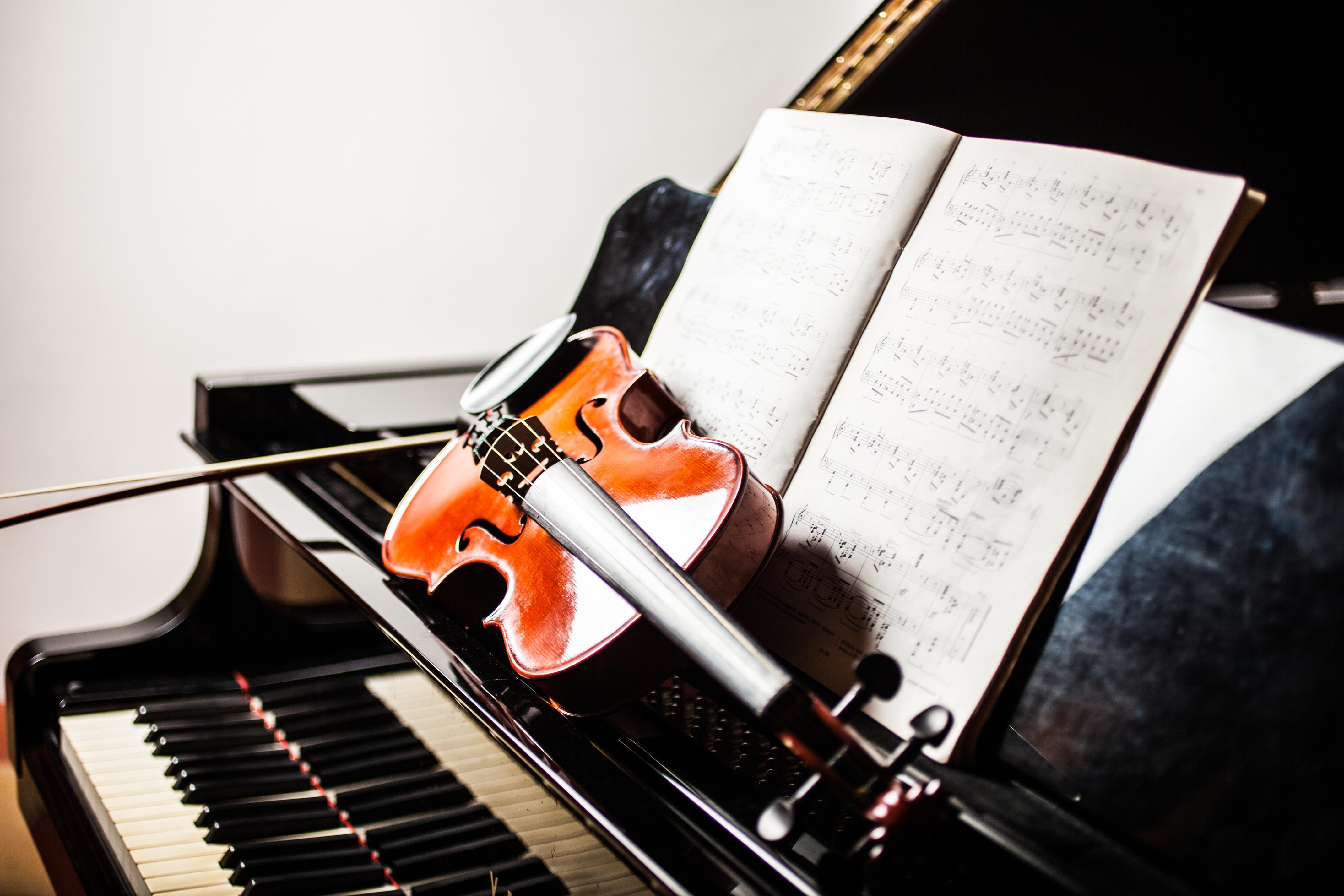 Instrument - Vioara